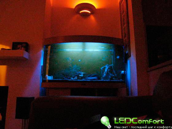 Прожектор своими руками из светодиодной ленты своими руками