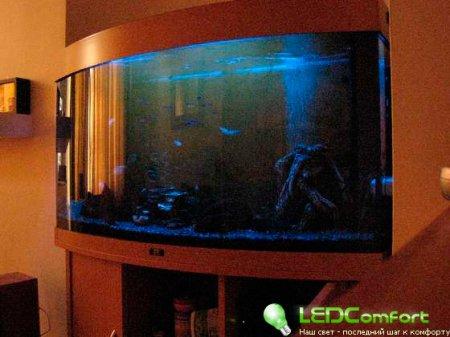 Лунное освещение аквариума