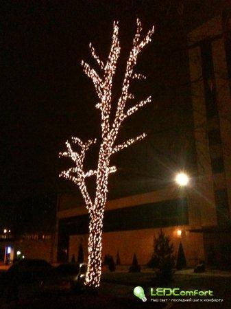 Деревья, украшенные светодиодными гирляндами